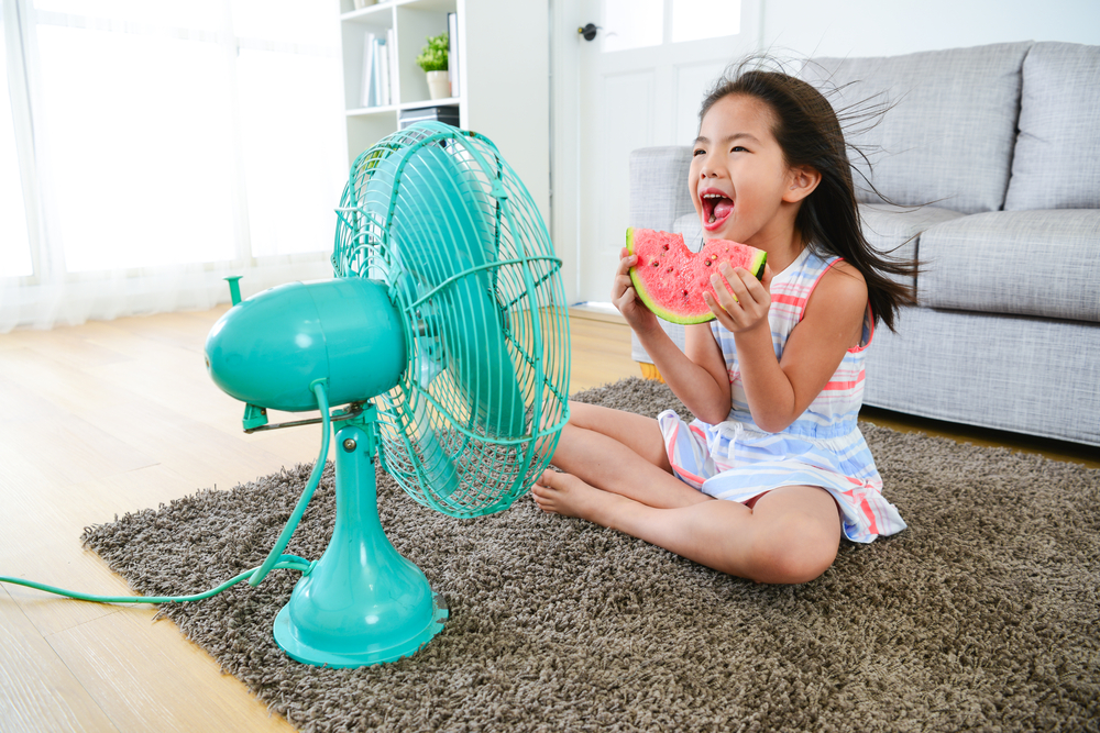 Portable Fans- Gottarent