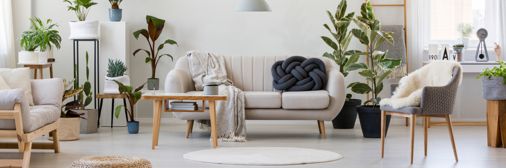 sofa with knot pillow